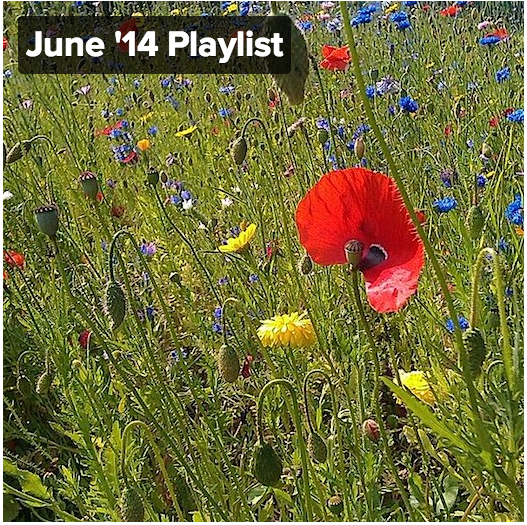 Click on the picture now to start the playlist and see all the other monthly favourites!
